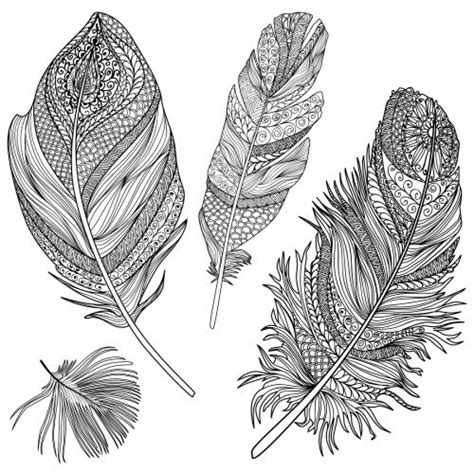 feather coloring page difficult intricate design coloring pages of feather