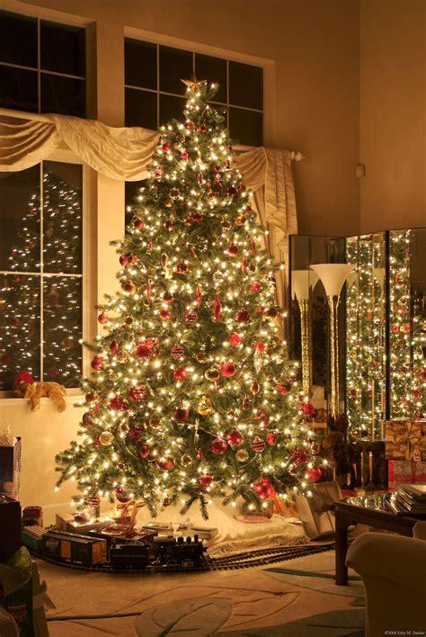 arboles de navidad en carrefour zoom frases 2012 11 25