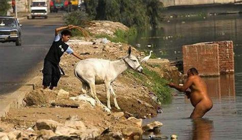 burro cojiendo pony hot hombres zoofilia follando yeguas o burras