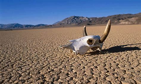 valley fact a top 10 interesting death valley facts featured article