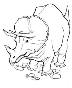 dinosaur coloring book for sale 1000 images about dinosaurs on dinosaur