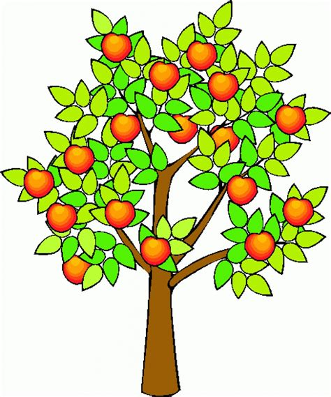 alberi clipart tree with fruits clip 101 clip