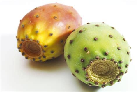 Interior Home Design For Small Spaces Prickly Pear Sabra Syrup Recipe