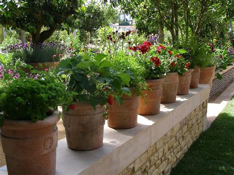 How To Make Kitchen Garden In Pots by Top 10 Herbs That You Should Grow In Your Kitchen Garden