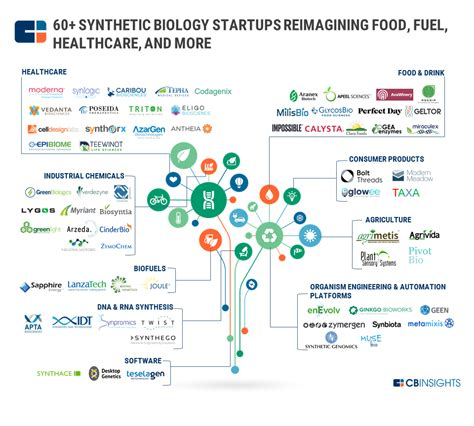 my cognitive automobile digital divorce from a cognitive personal assistant books 60 synthetic biology startups reimagining food fuel
