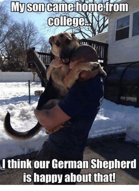 German Memes - image result for funny german shepherd memes joans dog