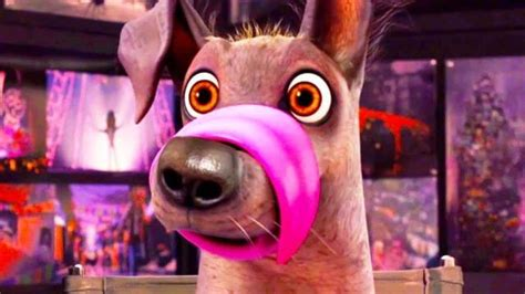 coco dog coco movie review the best pixar movie in recent years