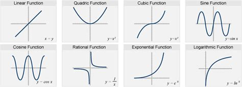 radical change made easy a functional diet that allows for a healthy happy books linear and exponential functions math