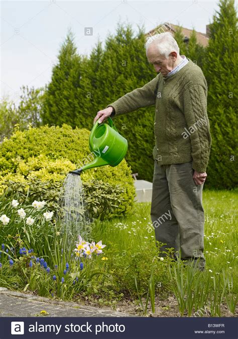 man watering  flowers   garden stock photo