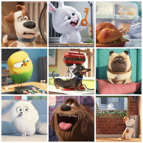secret of pets the secret of pets trailer and say hello to my fur babies