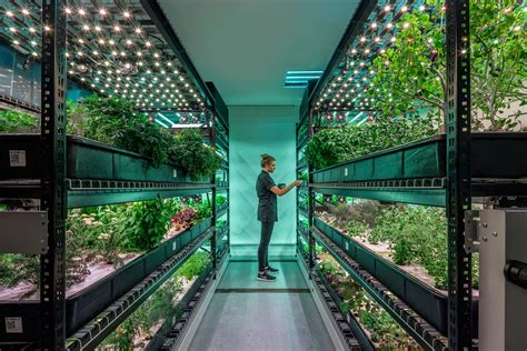 vertical farming   future  agriculture