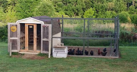 converting a shed into a chicken coop