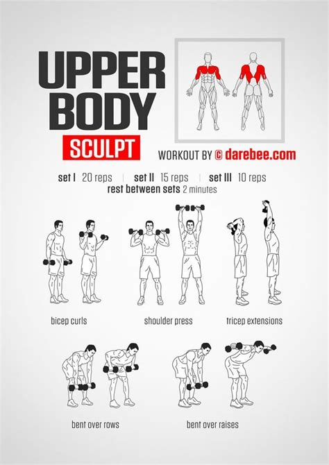 best 25 dumbbell arm workout ideas on arm