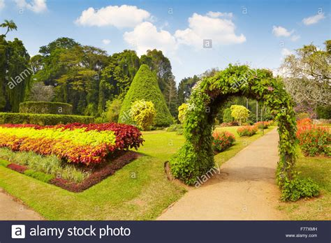 Peradeniya Botanical Garden Sri Lanka Kandy Peradeniya Botanic Garden Stock Photo Royalty Free Image 90529057 Alamy