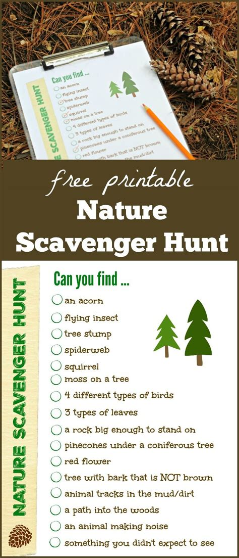 backyard scavenger hunt list 25 best ideas about classroom scavenger hunt on pinterest