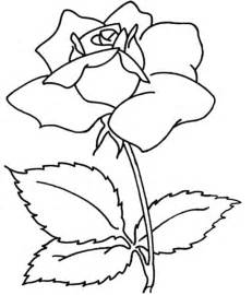 17 gambar sketsa mawar terindah unik dan cantik dp bbm dp bbm