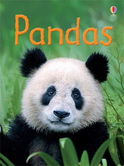 panda picture book pandas at usborne children s books