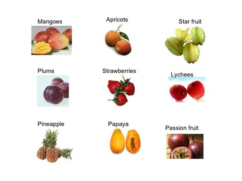 vegetables n fruits fruit and vegetables