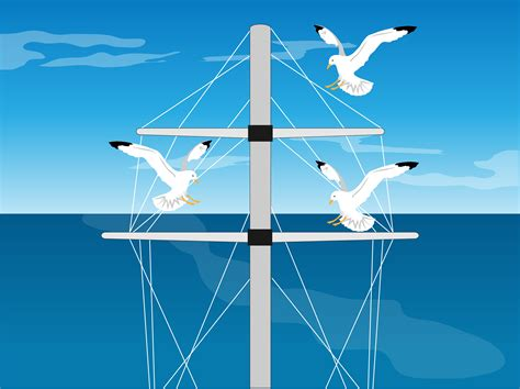 on a boat off how to keep pest birds off your boat 3 steps with pictures