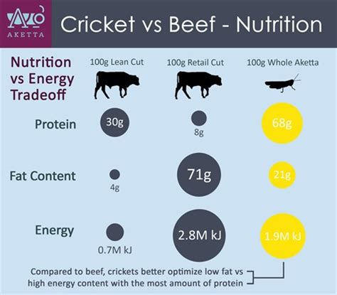 protein x nutrition fact cricket nutrition facts insect protein vs animal