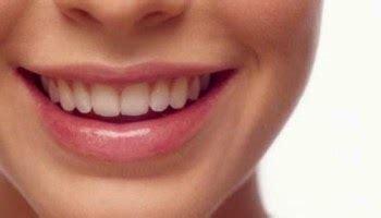 minyak alpukat cara alami dapatkan bibir merah merona kumpulan cara memerahkan bibir dengan gula pasir madu dan minyak zaitun