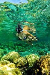 glass bottom boat tours naples florida 1000 images about flo rida on pinterest sarasota