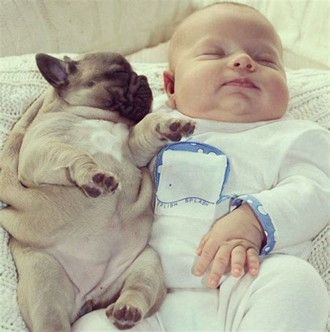 puppy sleeping with baby sleeping with baby dogs