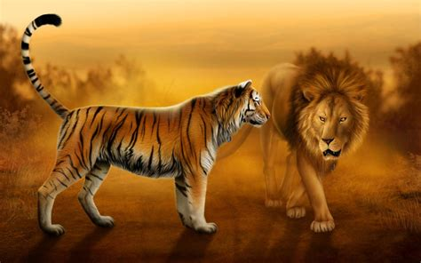 lion wallpaper pinterest lion and tiger wallpapers dowload jpg tattooo