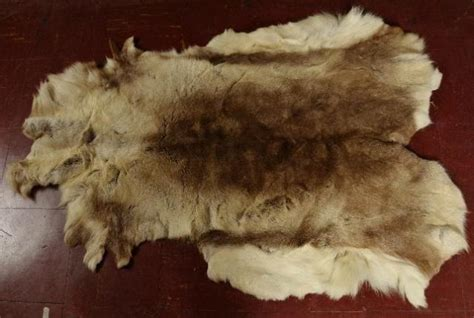 caribou skin rugs brown caribou riendeer hide pelt rug throw animal fur skin