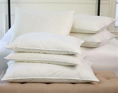pillows st regis boutique hotel store