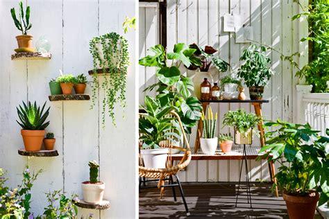 Mooie Planten Voor Binnen by Kamerplant Naar Buiten Homeandgarden Nl