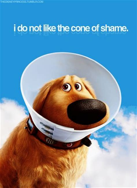 Cone Of Shame Meme - disney puppys and i love on pinterest