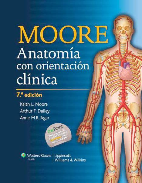 cadenas musculares busquet tomo 3 descargar gratis libros de consulta pautas terapia fisica