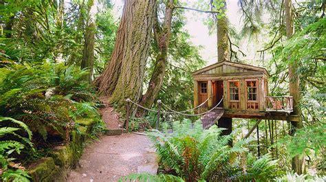 creative treehouse mountain architects hendricks architecture idaho