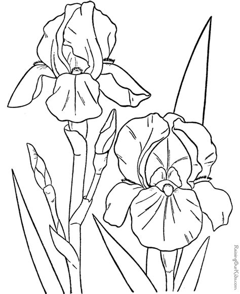 coloring pages more images roses 12 printable coloring pages of flowers coloring home