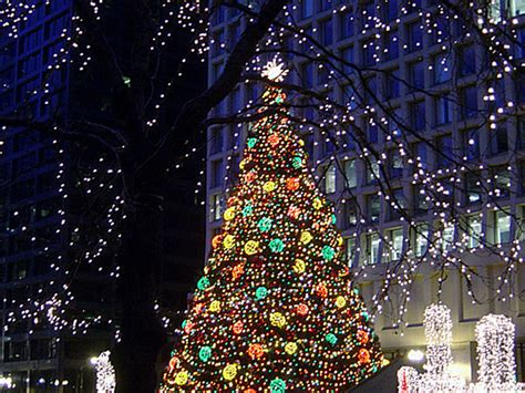 the daley plaza christmas tree in chicago decoist