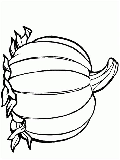 blank pumpkin template pumpkin template colouring pages 253543 blank pumpkin