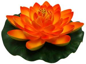 Orange Lotus Flower Foam Lotus Floating Water Flower Orange Candle Free