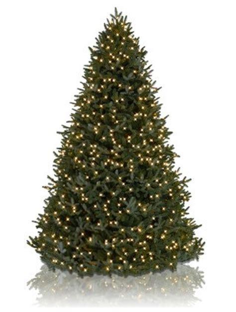 12 bh fraser fir artificial christmas tree led lights