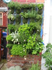 vertical garden viewing gallery