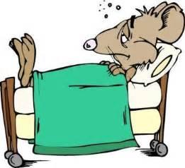 animated bed rapport fr 229 n en sjuks 228 ng v 228 till 65