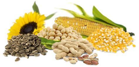 glicerina alimentare somos f 205 sicos o glicerol ou termo comercial a glicerina