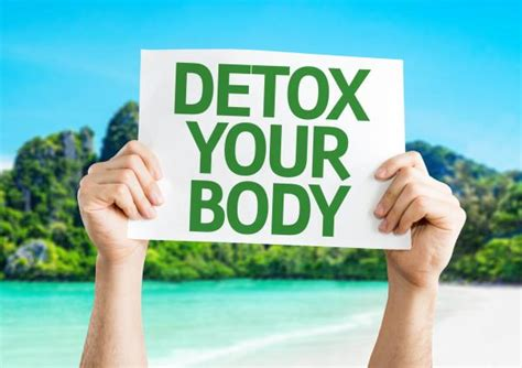 Detox From Doing The Time by Thinking About Doing A Cleanse Fall Is A Great Time