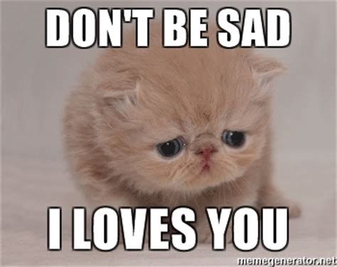 Dont Be Sad Meme - don t be sad i loves you super sad cat meme generator