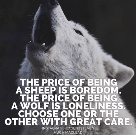 what alpha wolves are really like the art of manliness