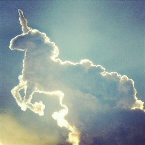 Unicorn Cloud | unicorn cloud unicorn fairytale magical horse clouds cloud sky space pony hippy art