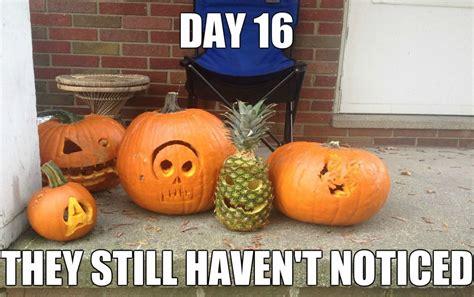 Ananas Pineapple Meme - funny meme quotes
