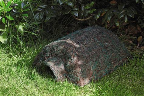 buy hedgehog house hedgehog houses to help creatures hibernate on sale at