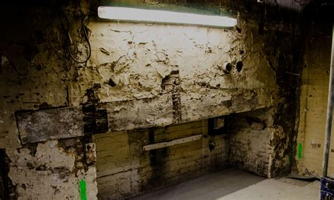 basement waterproofing specialists basement cellar waterproofing for essex kent norfolk hertfordshireap gooch