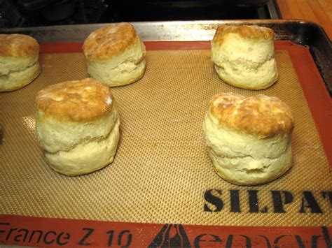 best biscuits the best biscuits great food it s really not